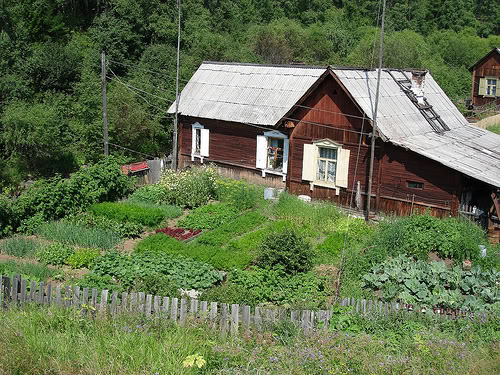 Can Russia 39 S Garden Plot Model Feed The World Organically