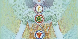 What are the Chakras and What is Their Purpose?
