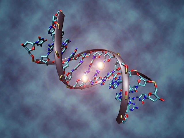 5 Standout Pros and Cons of Human Genetic Engineering