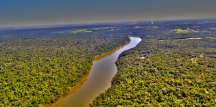 Precious Metals vs. Precious Life: Destruction of the Amazon