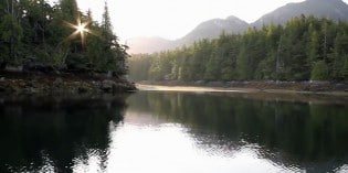 SPOIL – The Fight to Save the Great Bear Rainforest