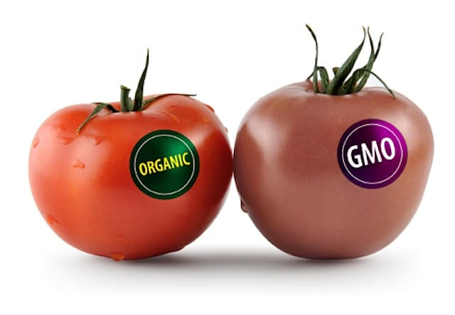 Gmo a world well never know