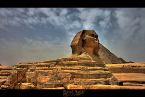 Flickr - sphynx - ALHanouf _ Photography