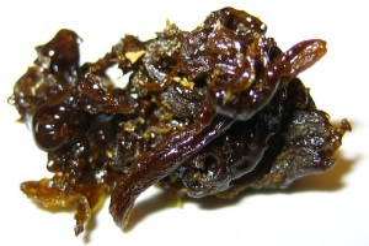 WIKI-Cannabis-Oil