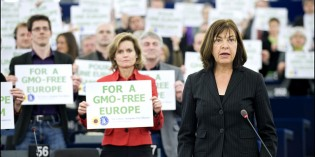 3 Signs That Anti-GMO Activism Is Working In Europe