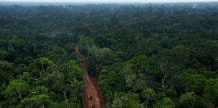 Photos Reveal Ecuador Building Secret Oil Roads Deeper Into Richest Rainforest on Earth, the Yasuní National Park