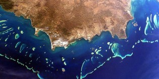 Great Barrier Reef to Be Dredged and Dumped to Make Way for Coal Port