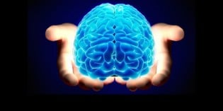 Developing Your Brain, Increasing Intelligence and Unlocking Your Potential