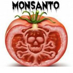 Why Should I Care About GMOs?