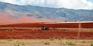 The Kaua`i Cocktail – How Big Agribusiness is Poisoning Hawaii