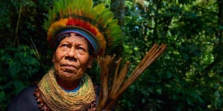 The Sacred Role of the Ayahuasca Shaman