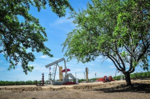 drill site and almond trees