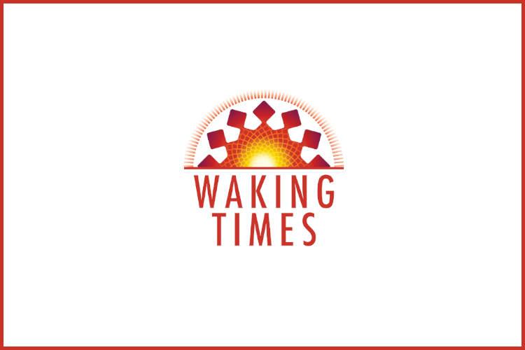 gas flare and potato field