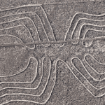 Nazca: Decoding The Riddle Of The Lines