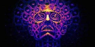 Does DMT Play a Role in the Expansion of Consciousness and Open a Doorway to the Afterlife?