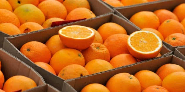 Can Vitamin C Cure Ebola?