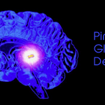 Treating the Pineal Gland with Essential Oils