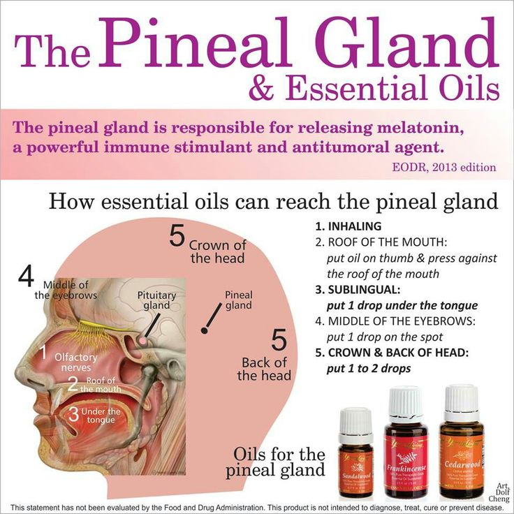Treating The Pineal Gland With Essential Oils Tis
