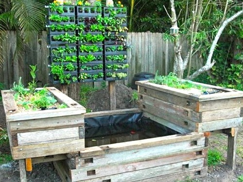 Practical aquaponics for growing nutritious vegetables for Garden pool aquaponics