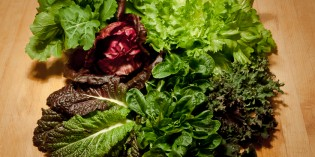 The Benefits of Note-So-Famous Leafy Greens