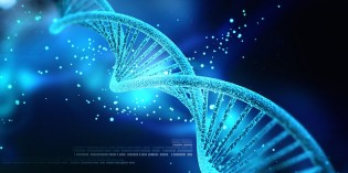 Is Human DNA Reprogrammable With Light, Sound, Frequency and Vibration?