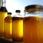7 Health Benefits of Kombucha