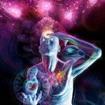 The Link between the Glands and the Chakras