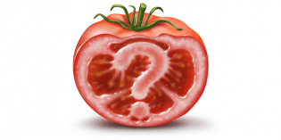 GMO Tomatoes May Soon Be Back on Supermarket Shelves