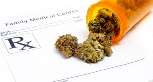 TMedical Cannabis Marijuana