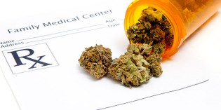Medical Cannabis a Much Safer Alternative to Painkillers