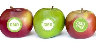 Why Prevent Labeling of GMO Foods?