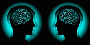 Perception and Illusion – How the Brain Maps Space