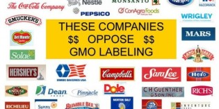 List of Companies that Support Monsanto – Do Not Buy Their Products!