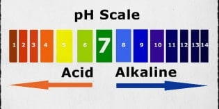 pH Chart of Alkaline and Acidic Foods