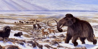 Cloning Technology and the De-extinction of Large Mammals