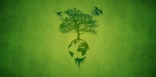 "Why ""Sustainable"" Earth, But Not Sustainable Health and Freedom?"