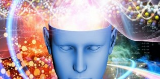 Your Brain on Psychedelic Mushrooms