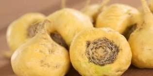 Inca's Treasure – Peruvian Maca Can Boost Your Sexual Energy and Vitality