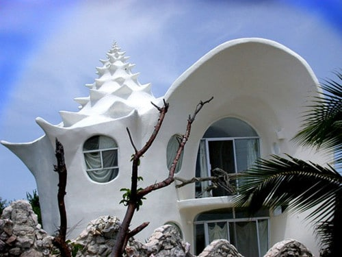 Creative Shell House Designs 580x435