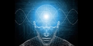 Has Consciousness Evolved?