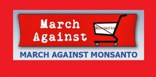 Activists Prepare for 4th Global March Against Monsanto