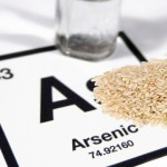 Is an Abundance of Arsenic Found in Rice Increasing Risk of Cancer?