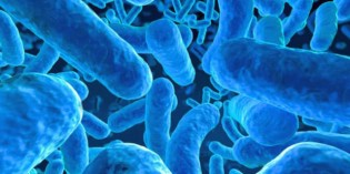Research Reveals the Importance of Your Microbiome for Optimal Health