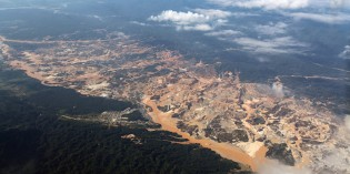 Mining the Heart of the Mother of God: Peru's Gold Rush Claims More Forest