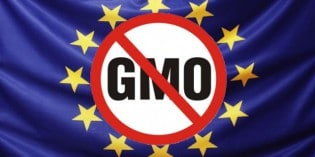 America Debates GMO Labels but 19 EU Nations Already Have Crop Bans