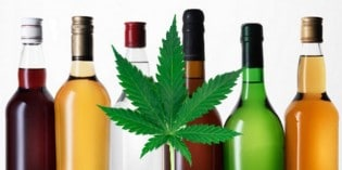 Study Finds Cannabis is Much Safer Than Alcohol or Tobacco