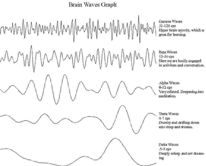 brainwaves-graph-compressed-680x549