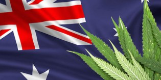 Medical Marijuana Legalized on Entire Continent of Australia