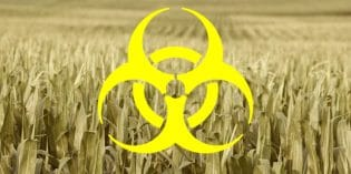 Monsanto's Next Weedkiller Uses RNA and It's Far Worse Than RoundUp