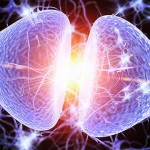 This Neurotransmitter is the Key to Spirituality and Higher Consciousness